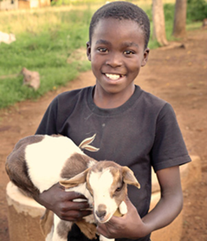 adopt-a-goat